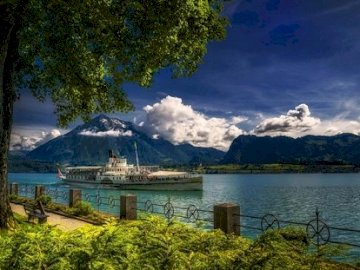 Lake Thun in Switzerland. - Landscape puzzle. A tree next to a body of water with a mountain in the background.