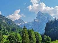 Austriae - Vackra berg direkt från Österrike. Ett träd med ett berg i bakgrunden.