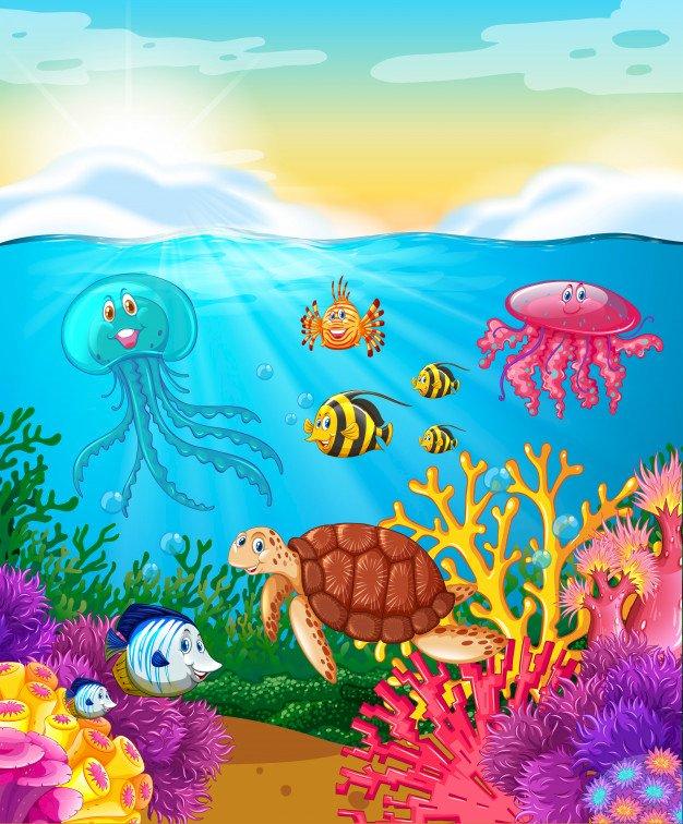 Zwierzęta w oceanie