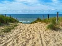 Cesta na pláž.
