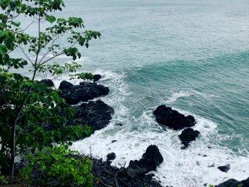 Csendes-óceán, Costa Rica, - Zöld fa víztest közelében nappali. Maryland, USA. Egy sziget a víztest közepén.