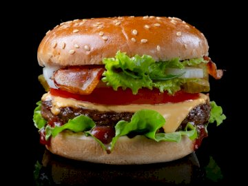 Burger | phototartyfood.ru - Hamburger con lattuga e pomodoro. Mosca. Una stretta di un panino.