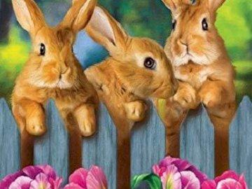 Puzzle with hares. - Układanka z zającami