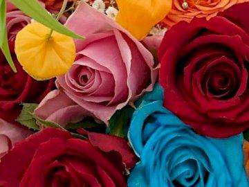 Bellissimi fiori - Bellissimi fiori di tutti i colori. Un mazzo di fiori.