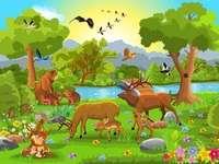 las dla dzieci z przedszkola