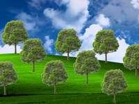 Green Lungs Jaroslaw