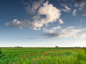 majowe Kąty - Pięknie jest w maju w Katach. Grupa ludzi stojących na zielonym polu.