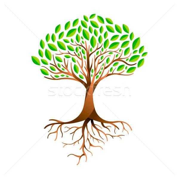 kresba stromů - rostliny - části, které tvoří strom. Zblízka květu (5×5)