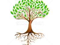 dessin d'arbre