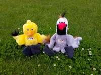 Dop et Ewa - Mascottes Dopi et Ewa de la commune DopiewoBeata. Un ours en peluche assis au sommet d'un champ
