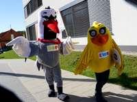 Dop et Ewa - Mascottes de la commune de Dopiewo: Dop et Ewo. Une personne marche dans la rue.