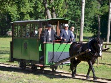 Kolej konna w Mrozach - Utwórz puzzle z kolejką konną z Mrozów. Mężczyzna jedzie na bryczce.