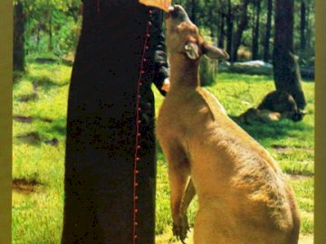 when traveling to Australia - Card. Wojtyla during a trip to Australia. A man holding a dog.