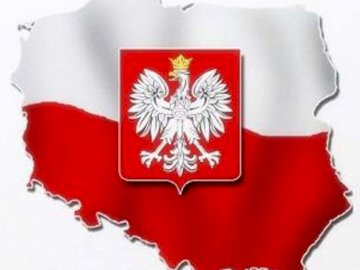 Polish emblem - what picture is hidden in the puzzle. A close up of a logo.