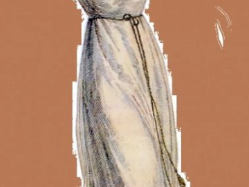 women's outfit from the time of Napoleon - women's outfit from the time of Napoleon. A close up of an insect.