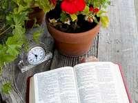 Sfânta Biblie pe masă
