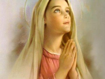 dziewica - Puzzle Matki Boskiej. Kobieta w sukience.