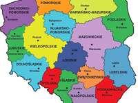 La Pologne et sa division administrative - Pologne - division administrative. Découpage administratif de Pologne - Voïvodies. Un gros plan d&