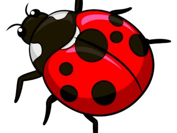 Seven-dot ladybug - The seven-dot ladybug is our family insect. Arrange the puzzles and count the number of dots. A draw