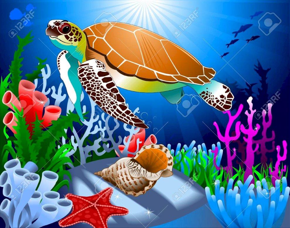 arcobali - Tortue dans l océan avec coraux coquillage (5×5)