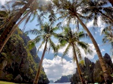 Palawan, Philippines - Hidden Lagoon, El Nido, Palawan, Philippines. A group of palm trees next to a body of water.