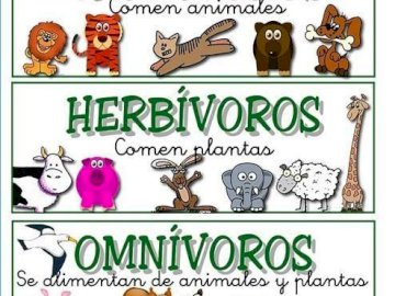 Класификация на животните според храната им - Открийте класификацията на животните според храната и