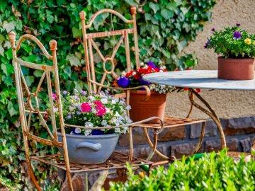 Wypoczynek w ogrodzie - czas na relaks ------------. Roślina w ogrodzie.