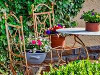 Odpočívej v zahradě - čas na odpočinek ------------. Rostlina v zahradě.