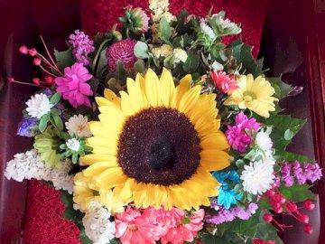 Bukiet kwiatów - Bukiet kolorowych kwiatów. Zamknięty kwiat.