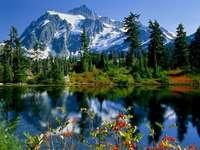 Jezioro W Górach - Jezioro Otoczone Lasem i Górami. Jezioro otoczone lasem.