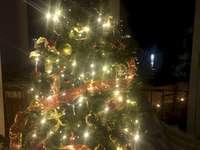 Bradul de Crăciun
