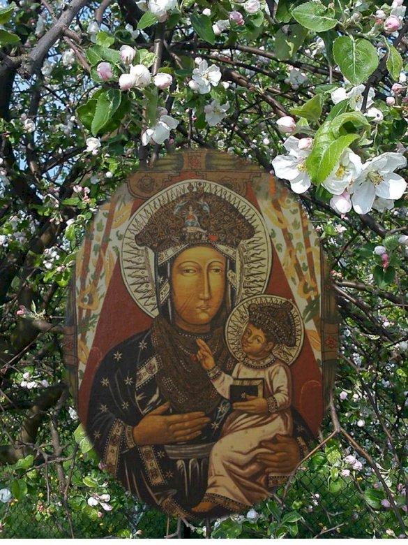 Майка на надеждата - Картина на Дева Мария от Поповска, Майка на надеждата от светилището в Попово Костелни. В близост до цветна гр (4×4)