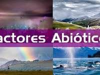 Abiotikus tényezők