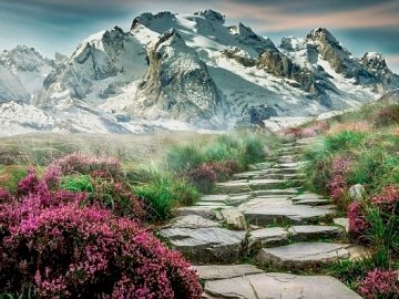 Paisaje de montaña - Paisaje de montaña, flores de primavera, camino rocoso. A cerca de una montaña de roca.