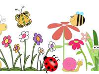Meadow insects - Spring meadow. Meadow puzzles, recognize insects on the meadow. Colorful meadow with insects.