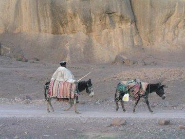 ALAIN TEAM BEM - Pamiątka z Maroka (Fint koło Warzazatu). Grupa ludzi jeżdżących na grzbiecie konia.