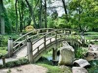 Ιαπωνικός κήπος - ξύλινη γέφυρα --------------. Ένα δέντρο σε ένα πάρκο.