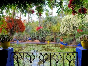 balcony_flowers_pots_pond_water-lilies - balcony_flowers_pots_pond_water-lilies. Wazon z kwiatami na drewnianym płocie.