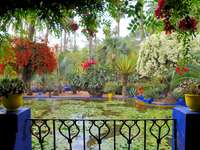 balcony_flowers_pots_pond_water-liljor