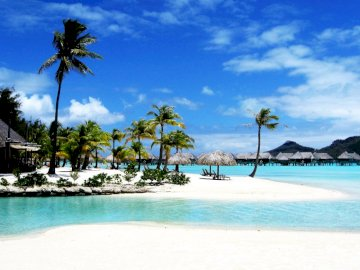 bora_bora_island_palm - bora_bora_island_palm. A beach with palm trees and a pool of water.