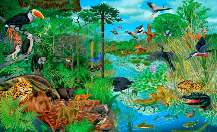 Φυσικό οικοσύστημα