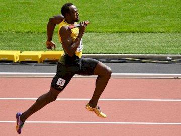 usain bolt puzzle - usain bolt biegacz medalista olimpisjki i mś.