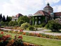 estate_flowers_garden_vegetation