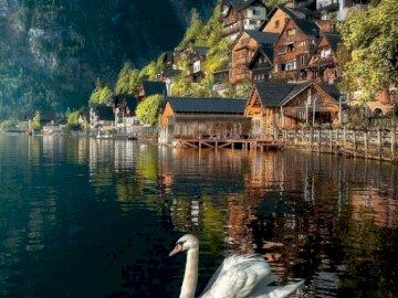 Nad jeziorem. - Układanka krajobrazowa: nad jeziorem.