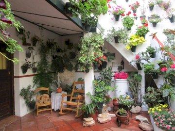 Cordoba Patio - Patia kwiatów Cordoba. Zakończenie up kwiatu ogród.