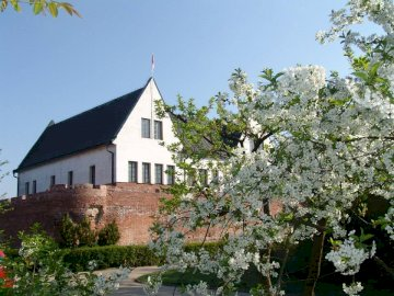 Puzzle with a castle - Puzzles for all fans of the District Museum in Konin!. A house with bushes in front of a building. T