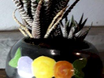 Martinas kleiner Topf - Schönes Foto von Martina Polenta. Eine Blumenvase auf einem Tisch.