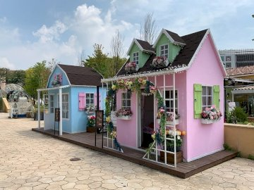 Pretty houses - Two pretty pink and blue houses. A store front of a house.