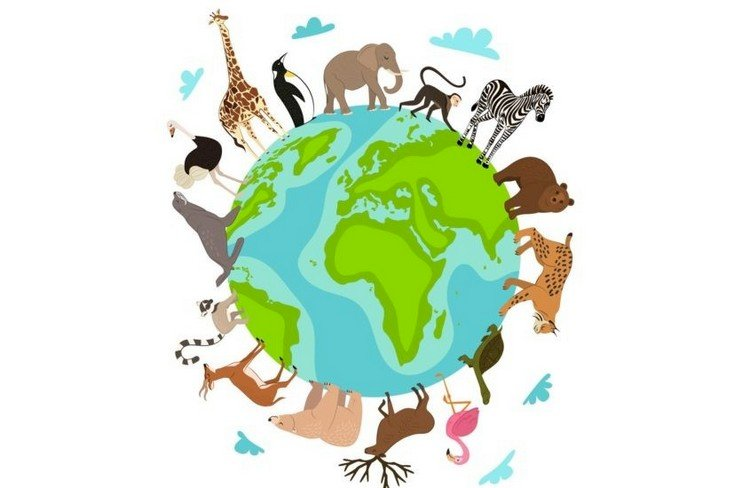 Egzotikus állatok - Egzotikus állatok. A WILD ÁLLATOKAT FÖLDGALONON BEMUTATÓ PUZZLE. Egy közelről egy térkép. Állatok egy földgömbön. Egy közelről egy térkép (4×3)