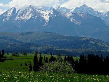 Blick auf die Tatra im Frühjahr :) - Blick auf die Tatra im Frühjahr. Ein großes grünes Feld mit einem Berg im Hintergrund.
